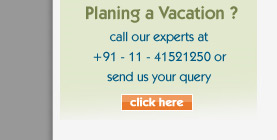 Planing A Vacation?